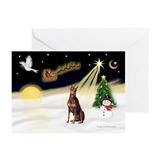 Night Flight/Dobie (red) Greeting Cards (Pk of 20)