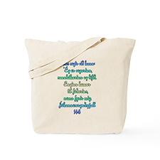 John 14:6 Icelandic Tote Bag