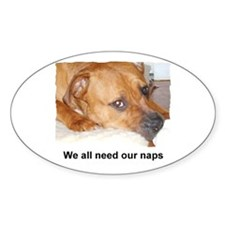 WE ALL NEED OUR NAPS Oval Decal
