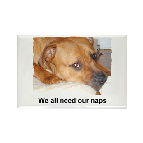 WE ALL NEED OUR NAPS Rectangle Magnet (100 pack)