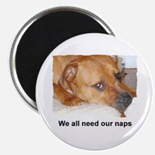 """WE ALL NEED OUR NAPS 2.25"""" Magnet (100 pack)"""