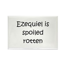 Cool Ezequiel Rectangle Magnet