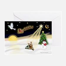 Night Flight/ Silky Ter 14 Greeting Card