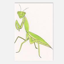 Funny Praying mantis Postcards (Package of 8)