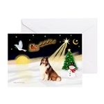 Night Flight/Sheltie #7 Greeting Card