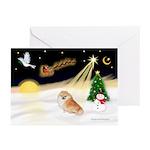 Night Flight/Pomeranian #2 Greeting Cards (Pk/10)