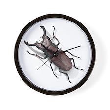 Bug 19 Wall Clock