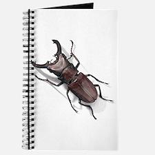 Bug 19 Journal