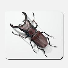 Bug 19 Mousepad