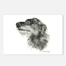 Scottish Deerhound Postcards (Package of 8)