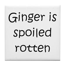 Ginger on Tile Coaster