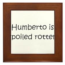 Humberto Framed Tile