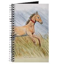 Akhal-Teke Artwork Journal