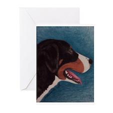 Appenzeller Greeting Cards (Pk of 10)