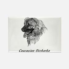 Cute Caucasian ovcharka Rectangle Magnet