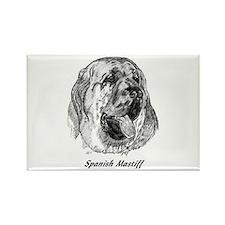 Cute Spanish mastiff Rectangle Magnet
