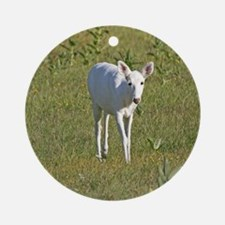 White White Tailed Deer Ornament (Round)