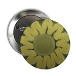 Sunflower 2.25