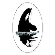 Orca Killer Whale Decal