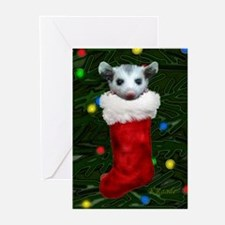 Possum in Stocking Greeting Cards (Pk of 20)