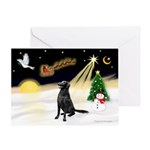 Night Flight/Flat Coat Rtr Greeting Card