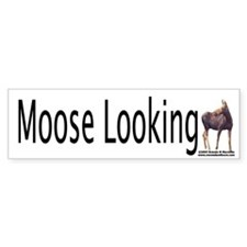 Moose Looking Bumper Sticker!