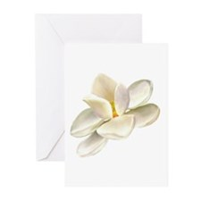 Magnolia Greeting Cards (Pk of 10)