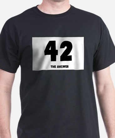 42 the answer to the question T-Shirt