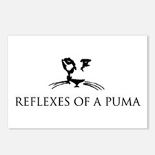 Reflexes of a Puma Postcards (Package of 8)