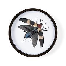 Bug 14 Wall Clock