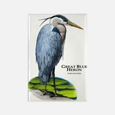 Great Blue Heron Rectangle Magnet
