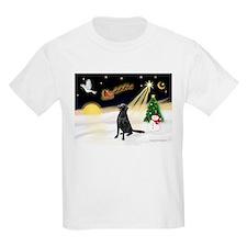 Night Flight/Flat Coat Rtr T-Shirt