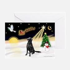 Night Flight/Flat Coat Rtr Greeting Card