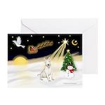 Night Flight/Bull Ter #4 Greeting Cards (Pk of 20)