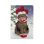 Jester Cat Christmas Magnet