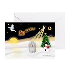 Night Flight/Coton #1 Greeting Cards (Pk of 20)