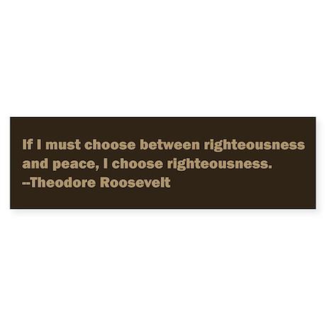 Theodore Roosevelt Quote Bumper Sticker