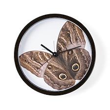 Moth (Bug 9) Wall Clock