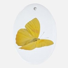 Yellow Butterfly (Bug 7) Oval Ornament
