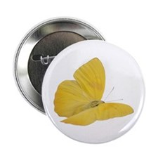 "Yellow Butterfly (Bug 7) 2.25"" Button"