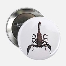 "Scorpion (Bug 2) 2.25"" Button"