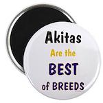 Akita Best of Breeds 2.25