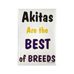 Akita Best of Breeds Rectangle Magnet (100 pack)