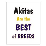 Akita Best of Breeds Small Poster