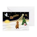 Night Flight/Poodle Std Greeting Cards (Pk of 10)