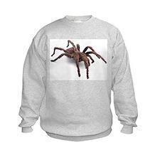 Tarantula (Bug 1) Sweatshirt