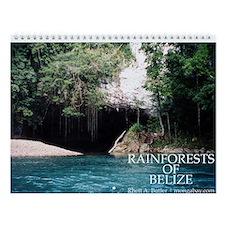 Rainforests of Belize Wall Calendar