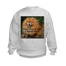 What ever ....Sweatshirt