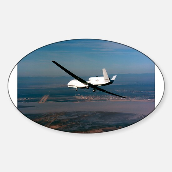 Global Hawk Oval Decal