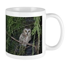 Saw-whet Owl Mug left hand